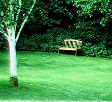 Green park by Barbara Ignasiak