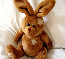 Cuddly toy rabbit by Linda More