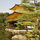Golden Pavilion, Kyoto, Japan. by johnrf