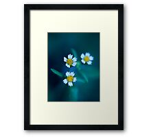 Bleu III. Framed Print
