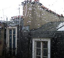Parisian rain by Jodi Fleming