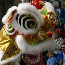 Chinese festival dragon in parade by cascoly