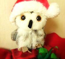 Santa's Little Helper by smile4me