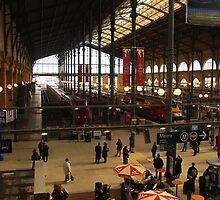 Gare du Nord by Peter Reid