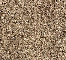 Wood Chippings by franceslewis