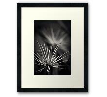 Untitled 1.0 Framed Print