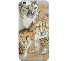 Expeditious iPhone Case/Skin