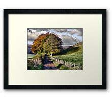The Road to Delcombe Farm Framed Print