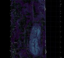 Maine USGS Historical Map Mars Hill 20110907 TM Inversion by wetdryvac