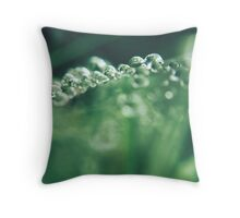 Precious emeralds Throw Pillow