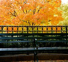 Fall Bench 2 by RDJones