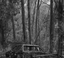 Old Holden part 1 - Rust in peace by Norman Repacholi