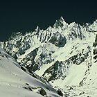 Gondoro Glacier by gondwana