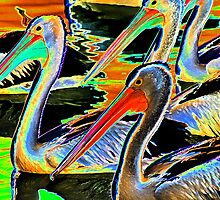 Glowing Pelicans by Evita