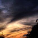 Burning Sunset by Shaina Lunde