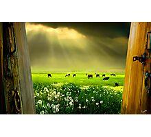 Gates of Life Photographic Print