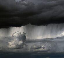 desert rain by Rachel  McKinnie