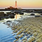 St Marys Lighthouse at Dusk by AJ Airey