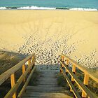 The Beach Stairs by contremo