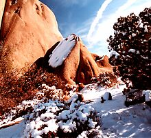 Winter Wonderland of Jumbo Rocks by steveberlin