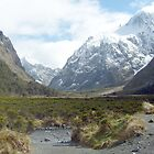Monkey Creek, Milford Road, New Zealand by meatpie