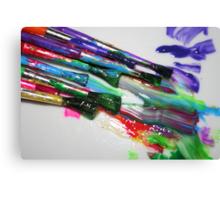 Rainbow of Colour 2 Canvas Print
