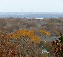 Autumn in Rhode Island | Tower Hill  by Jack McCabe