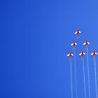 Roulettes by Simmone