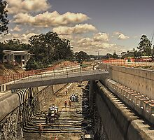 Robina tunnel, an update. by Murray Swift