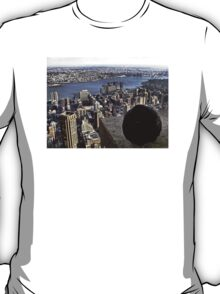 It's Chilly Up Here (New York) T-Shirt