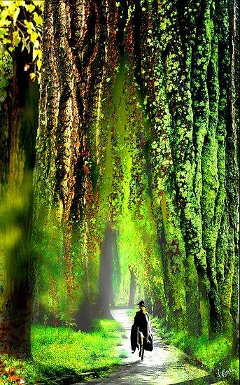 In the Woods by Igor Zenin