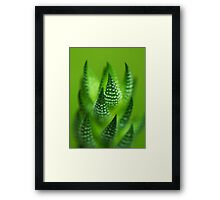 Fade to Green.  Framed Print