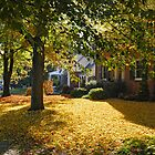 Fall in Hagerstown, MD by Dohmnuill