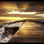 Calendar 2010 - Jose Ramos - Nature/Landscape Emotions... by José Ramos