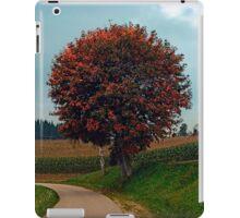 Blushing tree in shame   landscape photography iPad Case/Skin