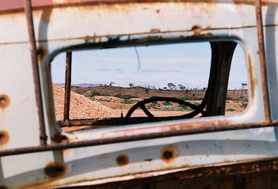 Windscreen Views by Felicity McLeod