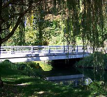 Willow Tree Bridge by Caren