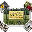 Jack&#x27;s Bee Farm by Patricia Montgomery