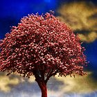 Tree In Red by Christine Lake