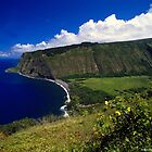 View On Top(Hawaii) by saseoche