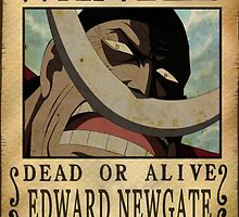 Wanted Whitebeard - One Piece by Amynovic