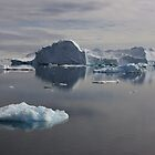 Ice Wilderness by leanneinnes