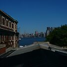 View of Manhattan From Ellis Island by Mooreky5