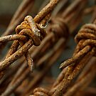 Barbed wire macro by GayeL Art