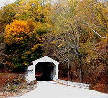 Covered Bridge in Autumn by Judi Taylor