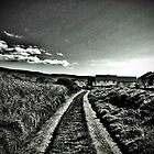 Down The Path by Danielle Golding