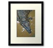Thai Croc Framed Print