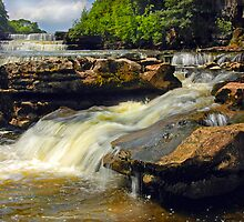 Aysgarth Falls - Yorkshire by eddiej