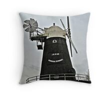As a Boy, I saw Horse Drawn wagons bringing Corn to be ground into Flour here. Throw Pillow