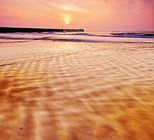 Walberswick Beach Suffolk 6. by Wayne Bradshaw